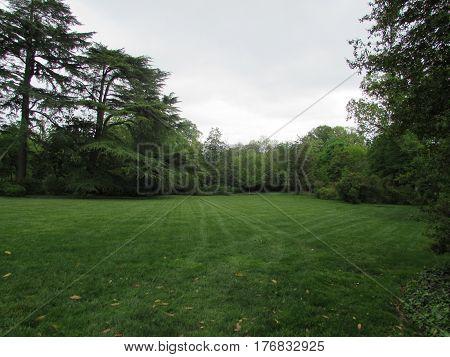 Green  Grass  and  Green  Trees,  Dumbarton  Oaks,  Washington  D.C.