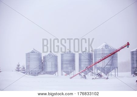 Row of steel agricultural grain storage bins in a white snowstorm