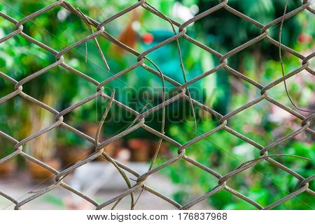 Mesh Fence with Blurred Background , Abstract