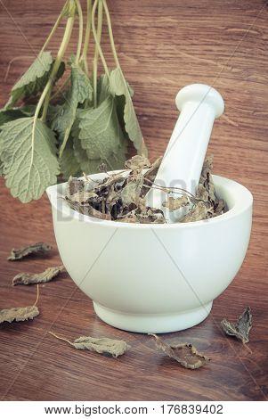 Vintage Photo, Fresh Green And Dried Lemon Balm In Mortar, Herbalism, Alternative Medicine