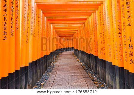 Red Torii gates in Fushimi Inari shrine in Kyoto Japan