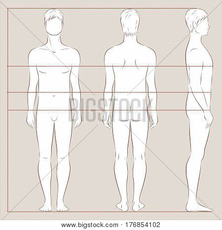 Vector illustration of men's body proportions and measurements for clothing design and sewing. Front back side views
