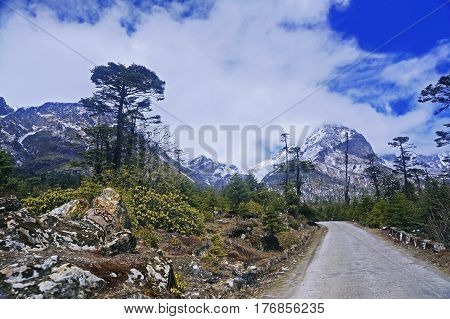 Road amidst Snowcapped Mountains in the High-Altitude Mountain Region of Sikkim, Northern India.