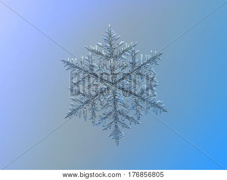 Macro photo of real snowflake: very big and complex snow crystal of fernlike dendrite type (approximately 8 millimeters from tip to tip) with six long, ornate arms, lots of side branches and thin icy