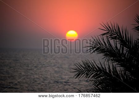 Beautiful sunset on the sea in a tropical country. The sun shines through the leaves of a palm tree. The sun sets behind the horizon at sea