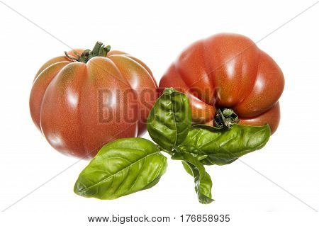 two ripe tomatoes and basil on isolated background