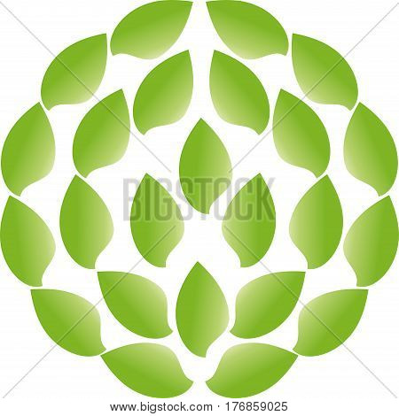 Many leaves in green, leaves and nature logo