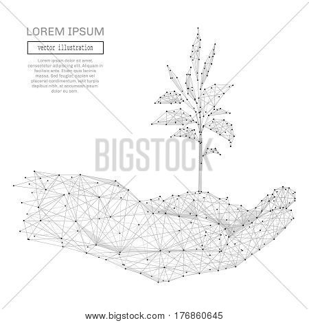 Abstract human hands holding sprout polygonal, geometry triangle. Light connection structure. Low poly vector background. Business concept