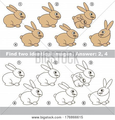 Educational kid matching game to find design difference, the task is to find similar Bunnies. The educational game for kids with easy game level. Compare objects and find two same Rabbits.