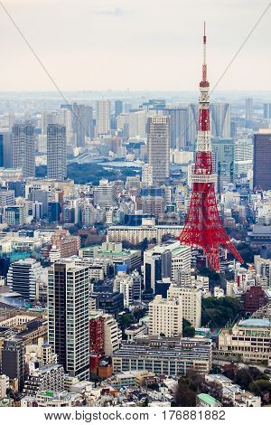 View of Tokyo tower from Roppongi Hill, Japan