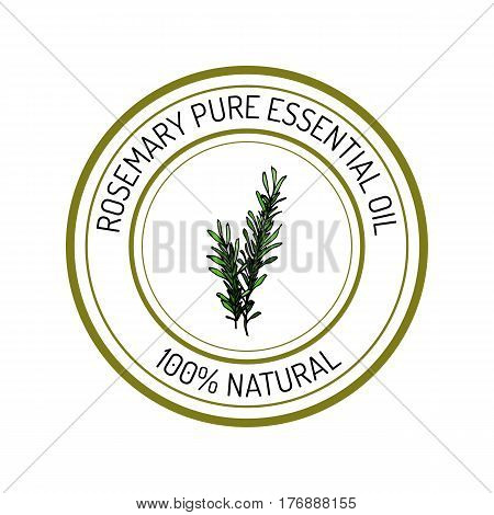 Rosemary, essential oil label, aromatic plant Vector illustration