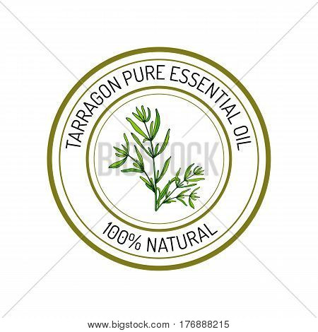 Tarragon, essential oil label, aromatic plant Vector illustration