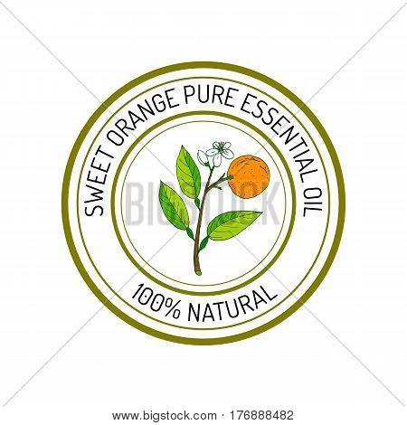 Sweet orange, essential oil label, aromatic plant. Vector illustration