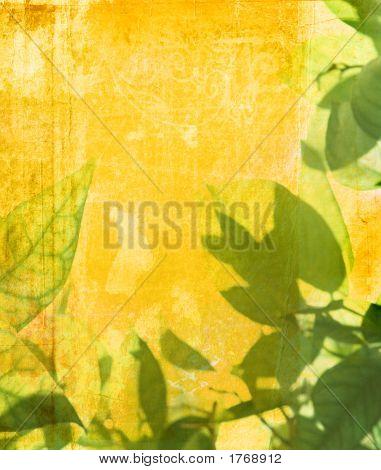 Grunge Leaves Background