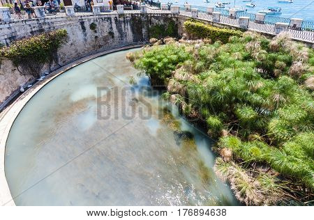 Above View Of Fonte Arethusa In Syracuse