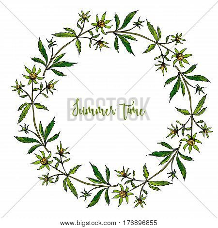 Hand drawing wild herbs wreath - bur-marigold herb