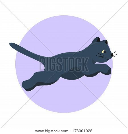 Cat breed cute kitten black pet portrait fluffy young adorable cartoon animal and pretty fun play feline sitting mammal domestic kitty vector illustration. Beautiful posing playful paw design.