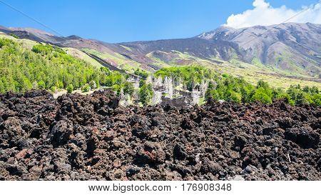 Hardened Lava Flow On Slope Of Etna Volcano