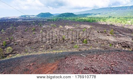 Landscape With Slope Of Old Craters Of Etna