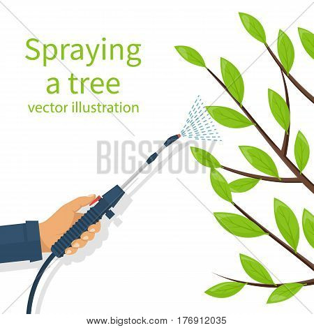 Spraying pesticide. Processing of trees. Insecticide. Farmer exterminator hold sprayer fertilizer in hand. Vector flat design. Isolated on white background. Chemicals in garden. Deciduous branches.