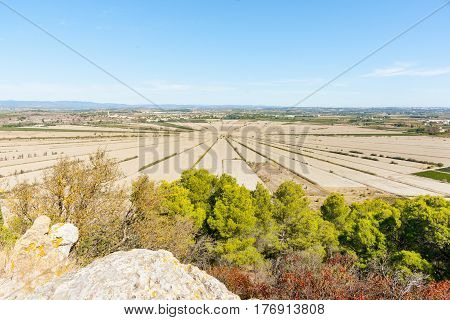 Interesting agricultural patterns in French Languedoc -Herault countryside