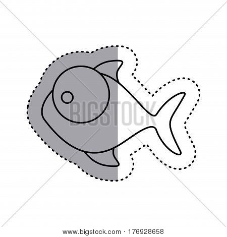 sticker silhouette fish aquatic animal icon vector illustration