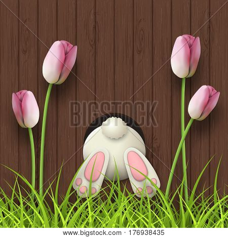Easter motive, white bunny bottom, pink tulips and fresh grass on dark brown wooden background, vector illustration, eps 10 with transparency and gradient meshes