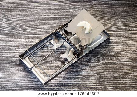 Mouse trap, trap, metal mouse trap, metal trap for mouse capture,