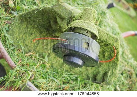 Spool trimmer with red fishing line and freshly cut grass