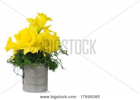 Daffy Bouquet