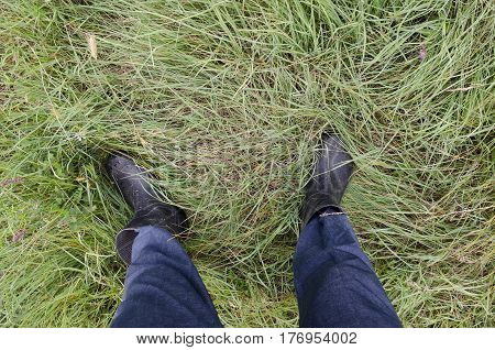Close up of dirty and wet boots on the green grass