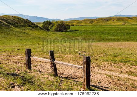Rural countryside with barbed wire fencing and green pasture.