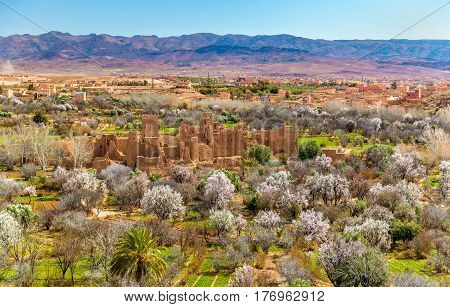 Ruins of a Kasbah in the Valley of Roses - Morocco, North Africa