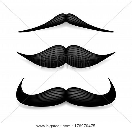 Mustache isolated on white. Black vector vintage moustache. Facial hair.Barber shop. Retro collection. Hipster beard.