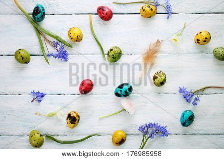 Easter background with quail eggs and spring flowers
