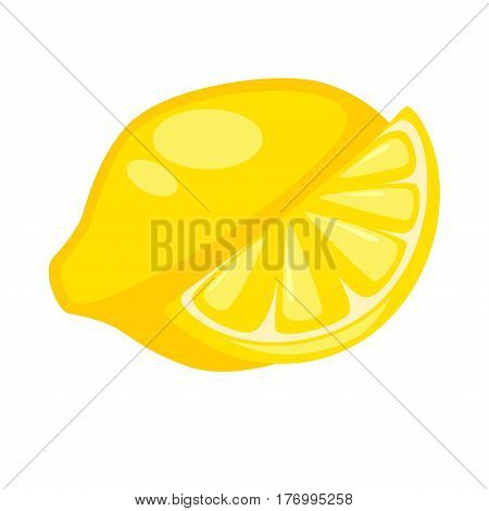 Lemon or citron whole and half isolated on white. Yellow large fragrant citrus fruit used for culinary and non-culinary purposes for juice. Realistic vector illustration of fruits rich in vitamin C