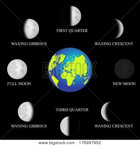 Basic phases of the moon. vector illustration