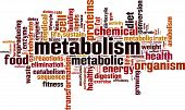 Metabolism word cloud concept. Vector illustration on white poster
