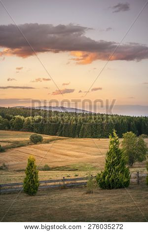Rural Countryside Landscape In The Sunset With Dry Fields And Green Pine Forest