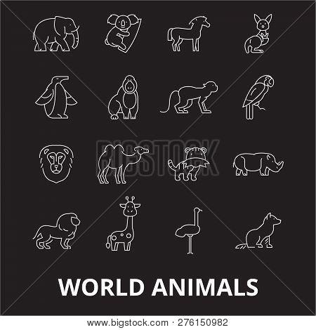 World Animals Editable Line Icons Vector Set On Black Background. World Animals White Outline Illust