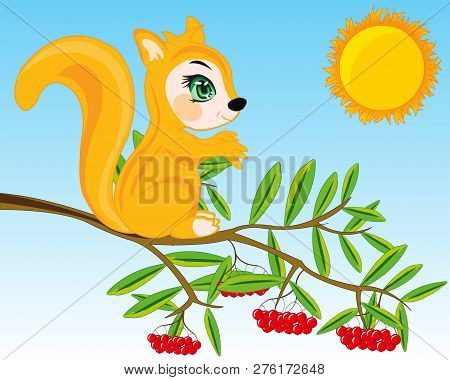 Animal Squirrel On Branch Of Rowanberry.vector Illustration