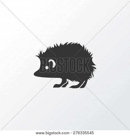 Hedgehog Icon Symbol. Premium Quality Isolated Porcupine Element In Trendy Style.
