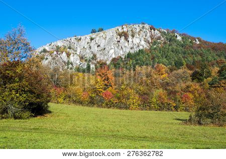 Colorful Slovakian Forest In Autumn (strazov Mountains, Slovakia)