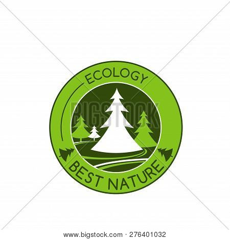 Green Nature And Environment Ecology Ion Of Green Trees Or Forest Park For Environmental Eco Project