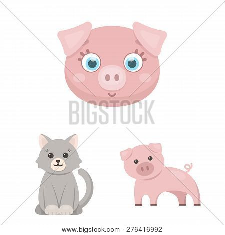 Isolated Object Of Animal And Habitat Icon. Collection Of Animal And Farm Stock Vector Illustration.