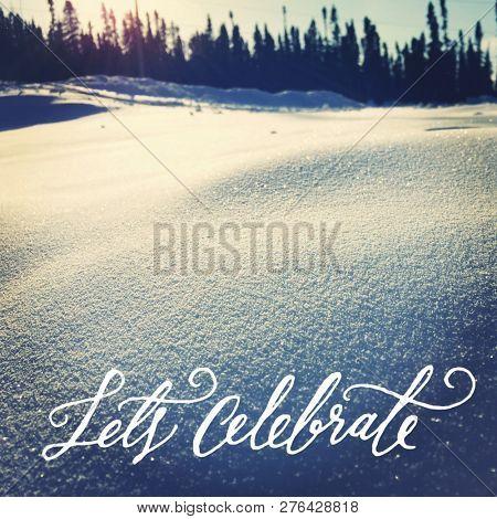 Quote- let's celebrate