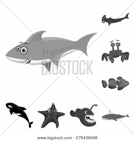 Vector Illustration Of Sea And Animal Icon. Set Of Sea And Marine Stock Vector Illustration.