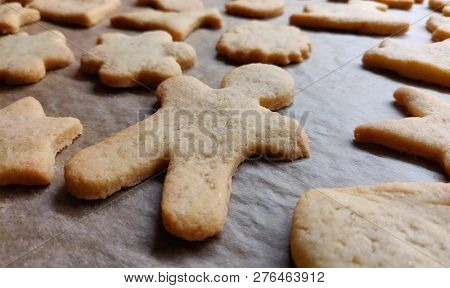 closeup of homemade baked cookies on a baking tray with intentional blur