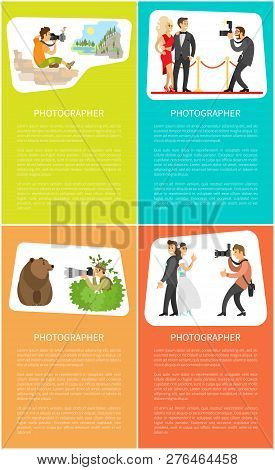 Photographer Making Pictures Of Wild Bear, Wedding Couple, Valley Scenery And Celebrities. Paparazzi