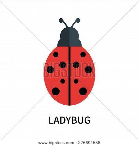 Ladybug Icon Isolated On White Background. Ladybug Icon Simple Sign. Ladybug Icon Trendy And Modern